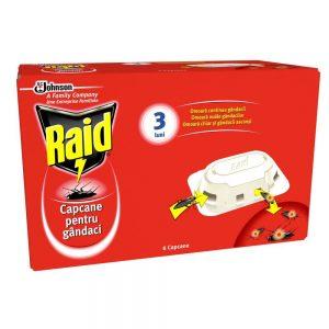 Raid Capcane 6 Taratoare 1 1000x1000 1